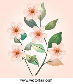 nature flowers plants with branches leaves design