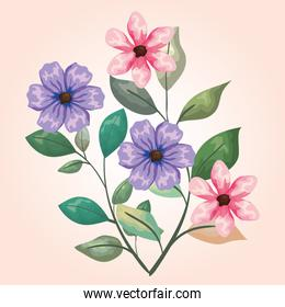 natural flowers plants with branches leaves design