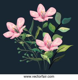 tropical flowers plants with exotic leaves style