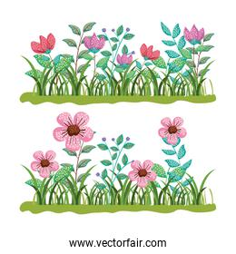 set exotic flowers plants with branches leaves