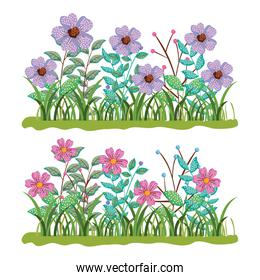 set nature flowers plants with branches leaves