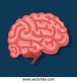 intelligence brain with memory and health creative