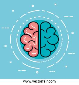 label with health brain and creative mind