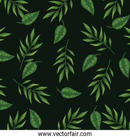 nature leaves with branches plants background