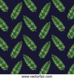tropical branches leaves plants style