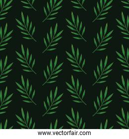 nature leaves exotic plants style