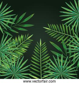 nature branches tropical leaves style
