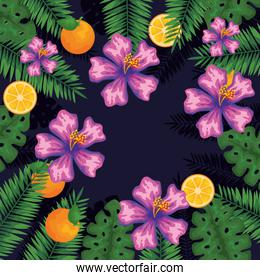 exotic flowers with orange fruits and leaves