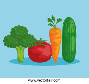 fresh broccoli with tomato and carrot with cucumber