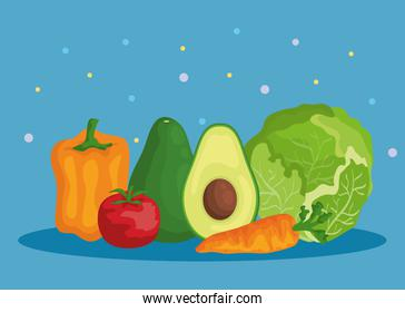 pepper with tomato and avocado with lettuce and carrot
