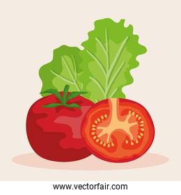 fresh tomato with lettuce vegetables nutrition