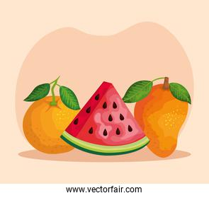 delicious orange with watermelon and mango with leaves
