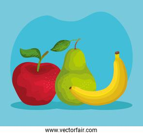 delicious apple with pear and banana fruits