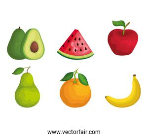 set of organic fruits with nutrition and vitamin