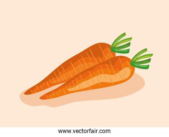 healthy carrots fresh vegetables nutrition