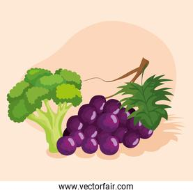 fresh broccoli vegetable and grapes fruits