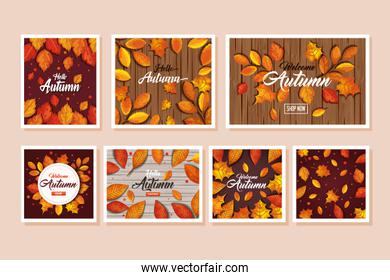 set patterns of autumn with leafs decoration