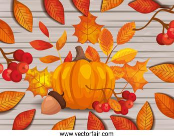 leafs autumn with pumpkin and nut in background wooden