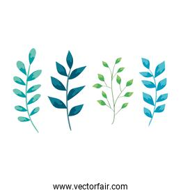 branch with leafs nature ecology isolated icon