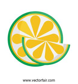 whole and slice lime citrus fruit icon