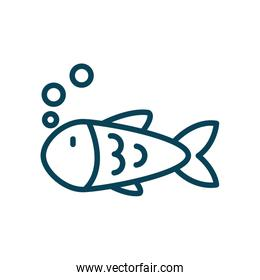 Isolated fish animal line style icon vector design