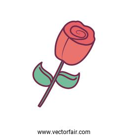 Isolated flower line and fill style icon vector design