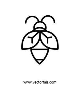 bee insect rural agriculture thick line