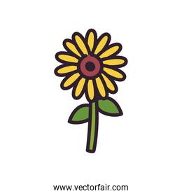 Isolated nature sunflower fill style icon vector design