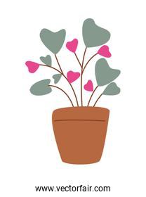 house plant in pot with hearts