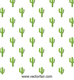 cactus mexican plants pattern background