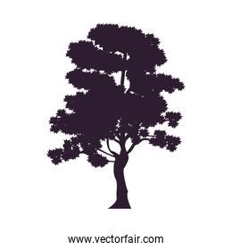 tree plant forest silhouette icon