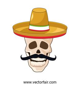 skull with mustache and mexican hat