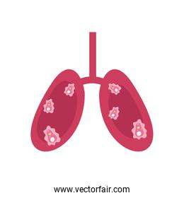 lungs with covid 19 virus icon, flat style