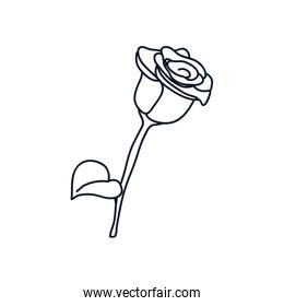 rose icon, line style, minimalist tattoo concept
