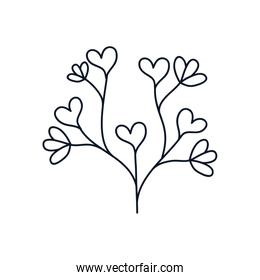 beautiful branch with hearts leaves icon, line style