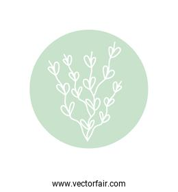 cute branch with leaves icon, line block style, minimalist tattoo concept