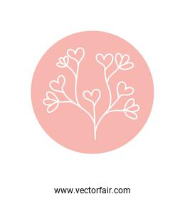 beautiful branch with hearts leaves icon, line block style