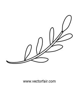 branch with leafs plant linear forms icon