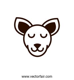 cute face kangaroo animal cartoon icon thick line