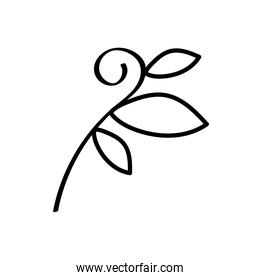 branch with leafs linear style icon