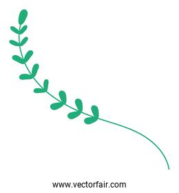 branch green color  with leafs plant icon