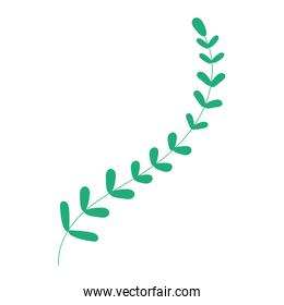 branch with leafs plant  green color  icon