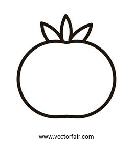 fresh tomato vegetable fill style icon