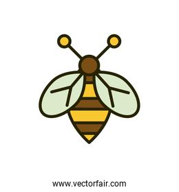 bee insect wildlife nature drawing
