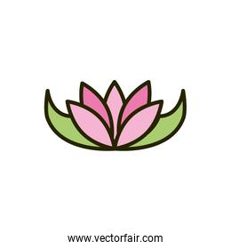 exotic flower tropical nature drawing