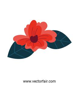 beautiful flower and leafs garden decorative icon