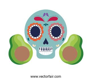 skull mexican with avocados isolated icon