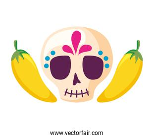 skull mexican and chili pepper isolated icon