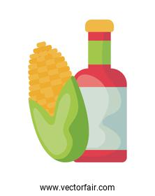 bottle tequila with cob corn isolated icon