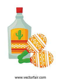 maracas with bottle tequila isolated icon
